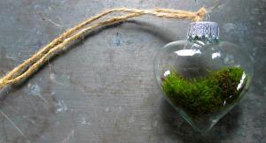 Moss ornament closeup