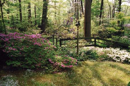 Jerry fritz garden design david benner moss wildflower for Spring hill nursery garden designs