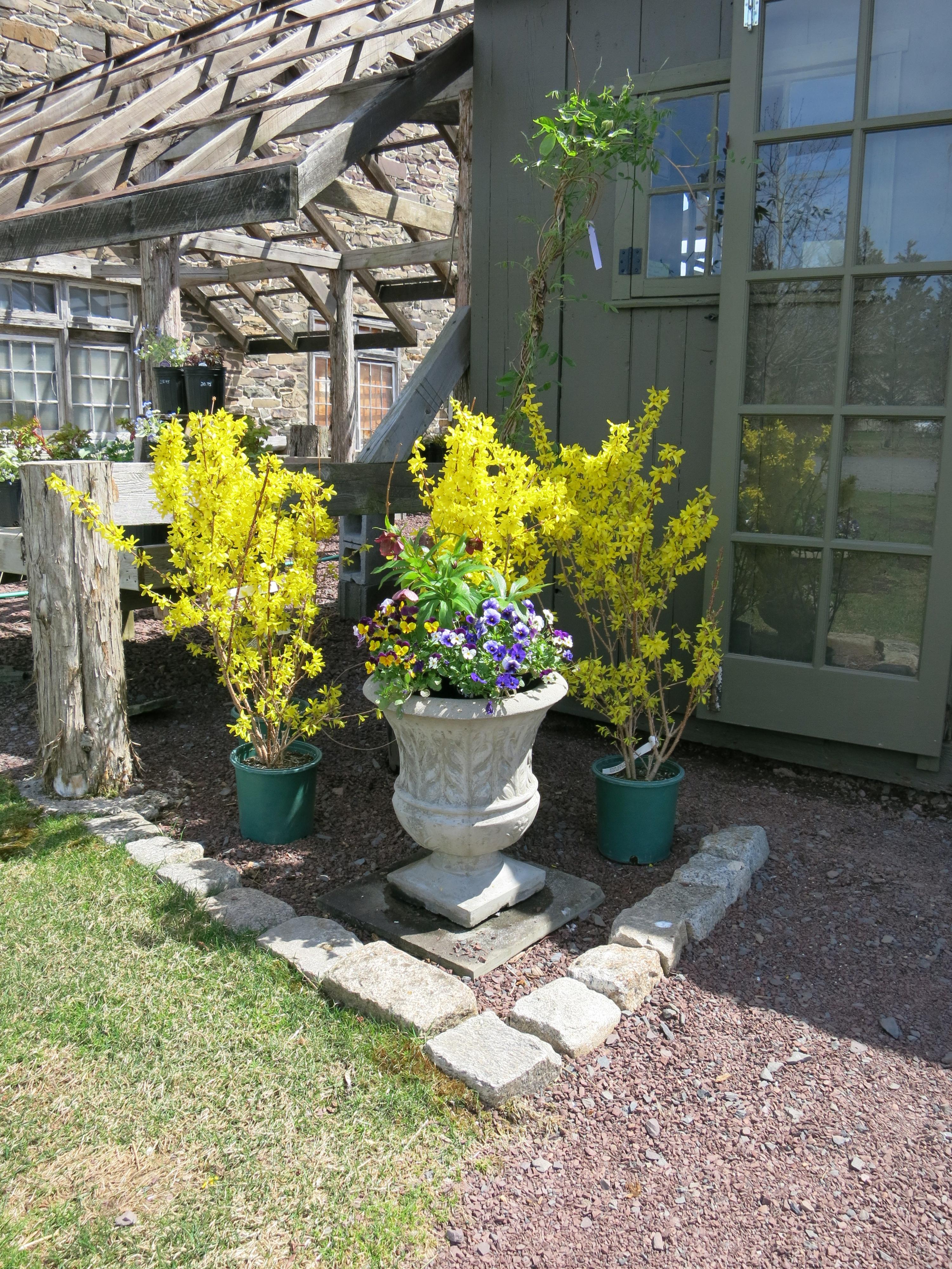Jerry fritz garden design new arrivals for spring for Spring hill nursery garden designs